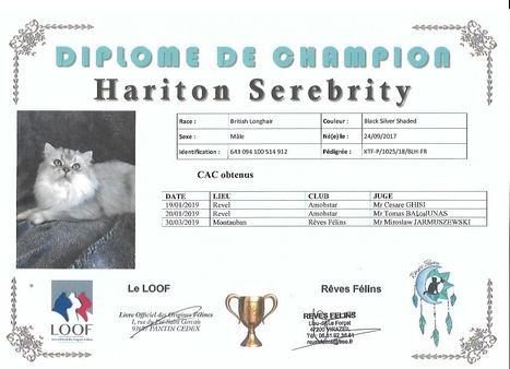Diplome Hariton.jpeg