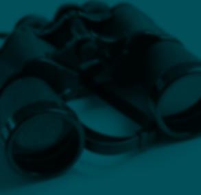 4 - Binoculars.png