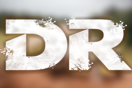RST Software Dirt Rally 2 License