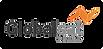 Globalsat_Logo copy.png