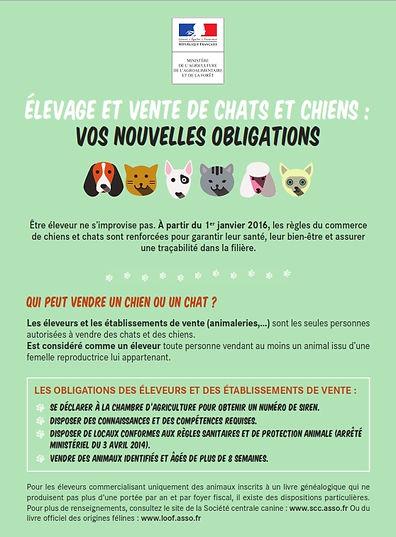 Règle élevage et vente de chats et chiens janvier 2016