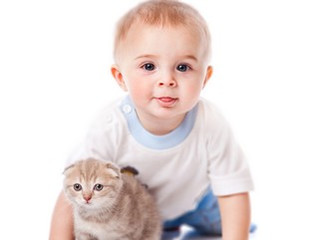 Quand Bébé arrive dans la vie du chat !