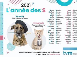 2021, année des S
