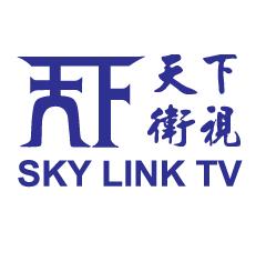 天下衛視logo (2001-2009)