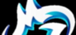 Logo Slice.png