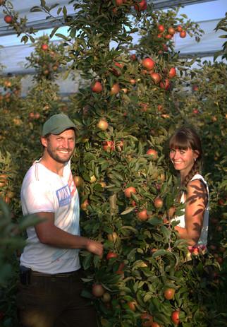 Biobauer Severin mit seiner Biobäurin Daniela beim Äpfel pflücken