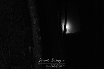Trail Meursault By Night 2019.jpg
