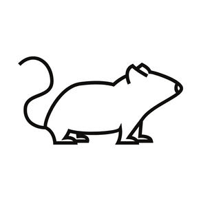 Minimising Rodent Activity Around the Home
