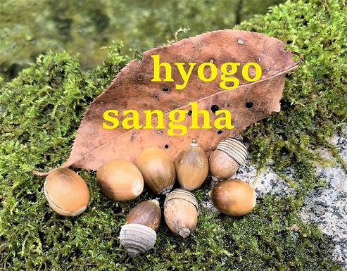 兵庫サンガ