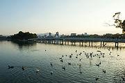 福岡サンガ