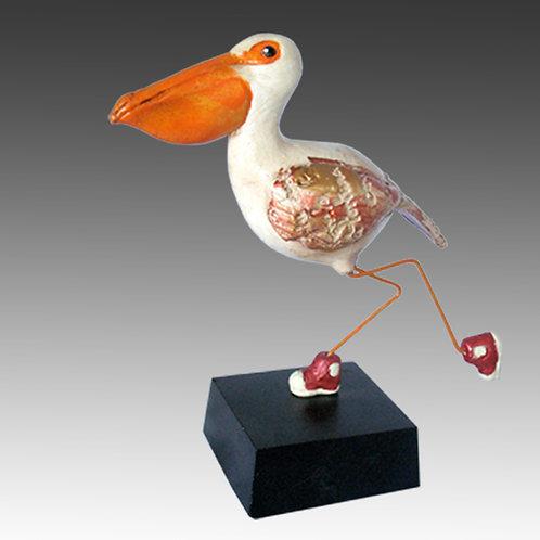 Pelican Chick