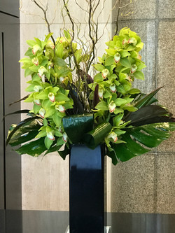 Green orchids with willow