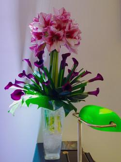 Amaryllis design