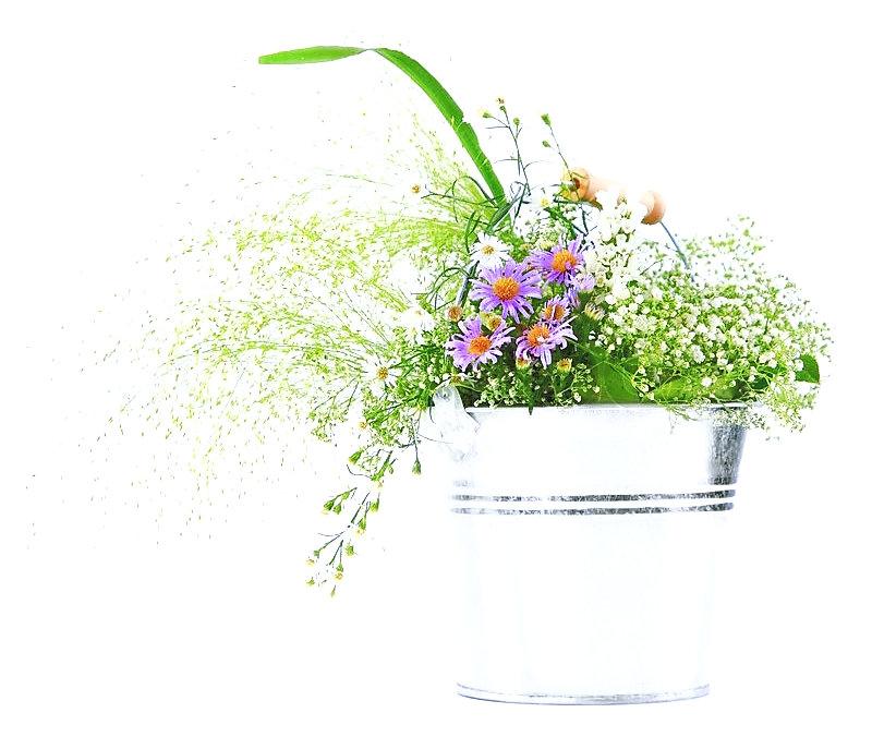 3438195-bucket-of-spring-fresh-wild-flow