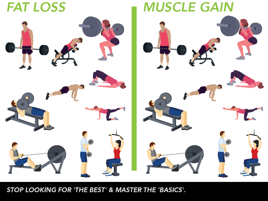 Exercise for Muscle Gain or Fat loss answered... Part 2