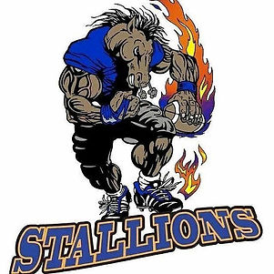 Sandston Stallions.jpg