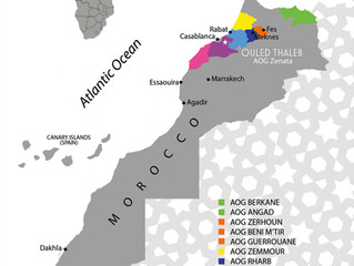 A wine map of Morocco's vineyards with 14 AOGs & 1 AOC. Moroccan wine to the north and south!