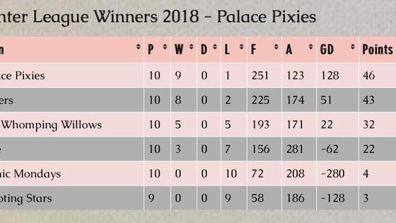 Winter league winners - Norwood - Palace Pixies