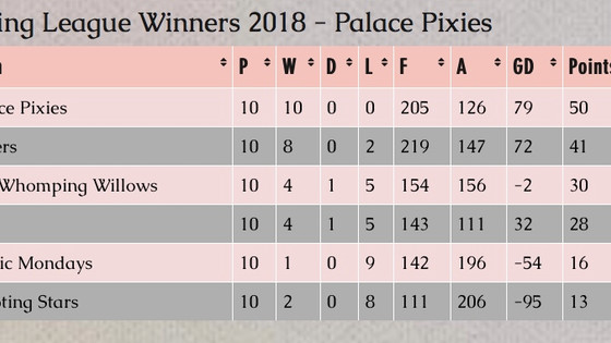 Spring Leagues Winners - Norwood - Palace Pixies