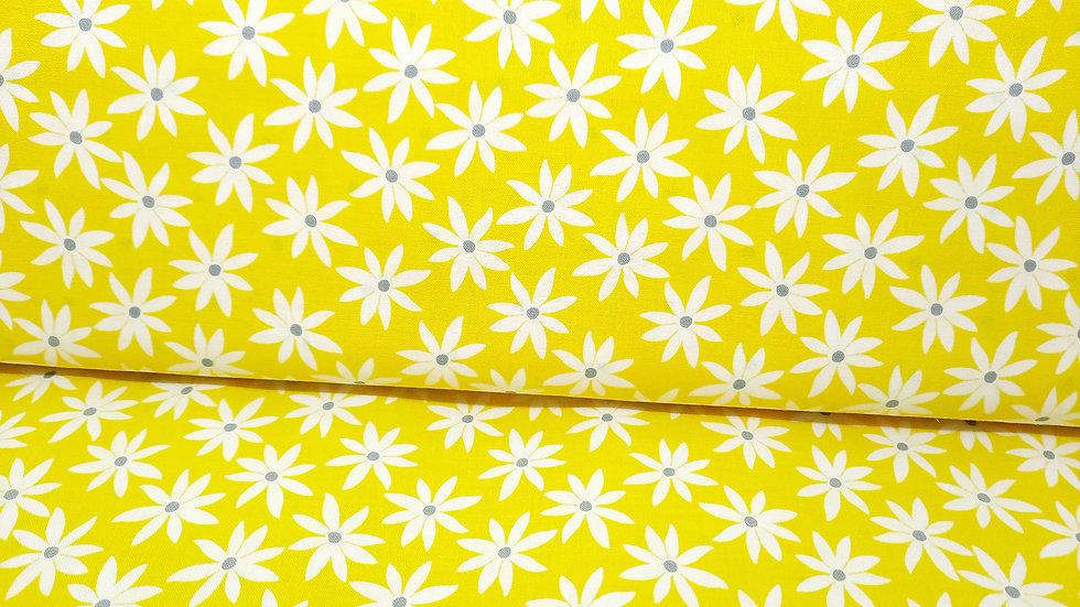 Lemon Twist Greta Lynn, blomster hvit på lysegul, 0,5 m