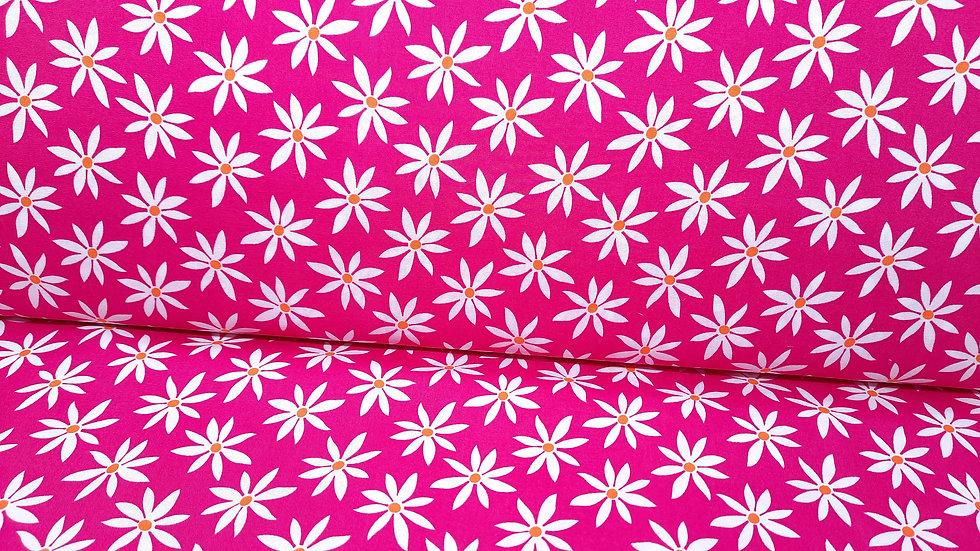 Fruit Punch Greta Lynn, blomster hvit på pink, 0,5 m