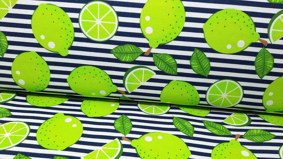 kanvas med limefrukt på marineblå striper