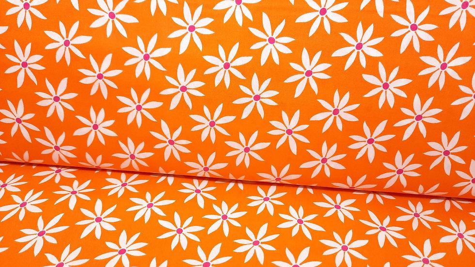 Fruit Punch Greta Lynn, blomster hvit på oransje, 0,5 m