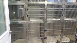 Large and medium cages