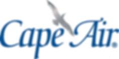 Gull Logo Blue  Silver - JPG (002).jpg