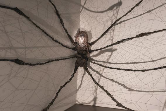 Arachnopocene Weaver Detail