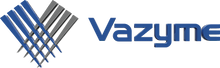 Vazyme - Clear Background.png