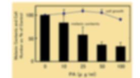 graph 5.jpg