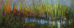 Among the Reeds 4 x 8 oil