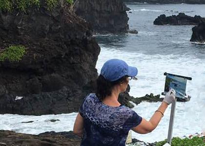 Plein air at Haleakala National Park