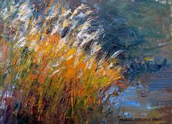 Riverdance 6 x 8 oil