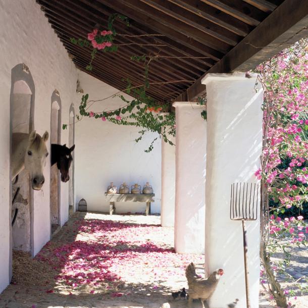 Cortijo El Aguilon, Luxury Villa Tarifa: Stables