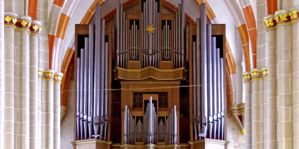 Mühlhausen (D): Bachkirche Divi Blasii: Kurzkonzert
