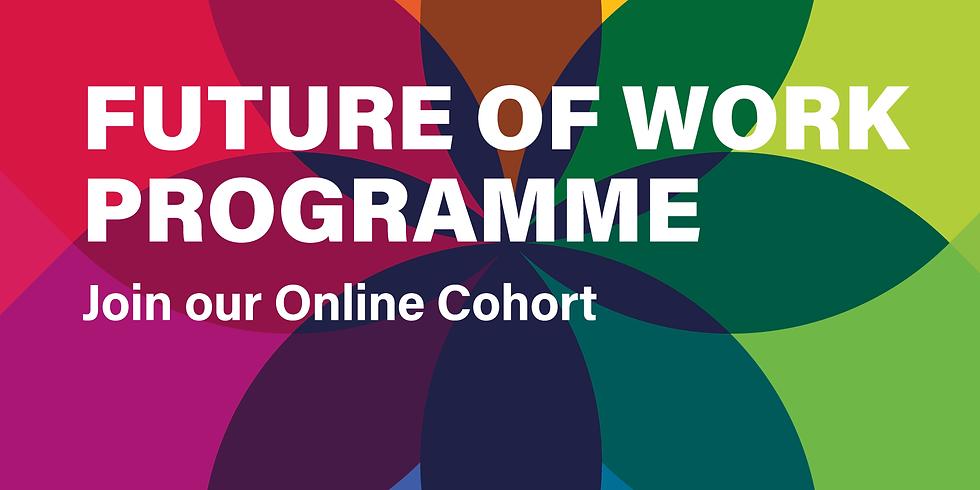 Future of Work Programme - Cohort #2 - register your interest