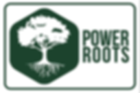 Logo Power Roots