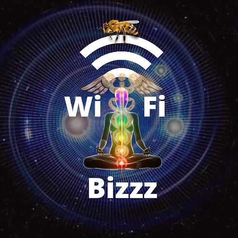 logo wifi bizzz.png