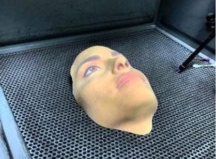Imprimir 3D a escala natural rostros personas u otros elementos. European BIM Summit, escaneo 3D, impresora 3D, Escaner 3D