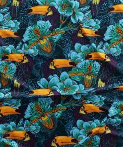 Tucan Azul