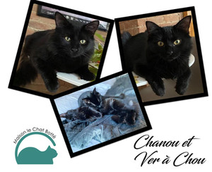 Chanou et Ver-à-Chou
