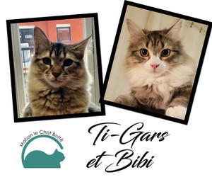 Ti-Gars & Bibi