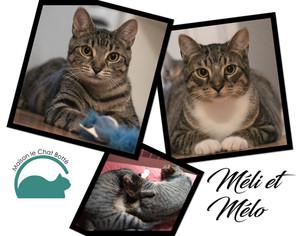 Méli & Mélo