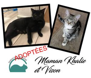 Maman Khalie & Vison