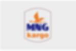 Mng Kargo Hakkındaki Tüm Tüketici Şikayetleri