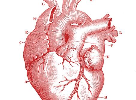 Cardio | Athlete's Heart