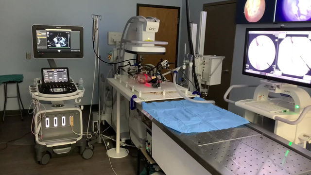 NEW MEDICAL DEVICE SERVICE OPENS IN MEDICAL ALLEY