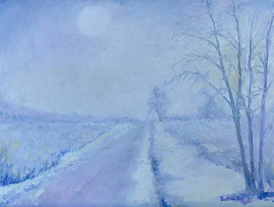 Winter - Wisconsin